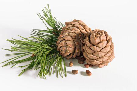 Cono de la nuez de pino y piñones en el fondo blanco. Alimentos orgánicos.