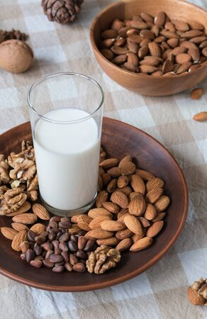 healthy eating concept, almonds, pine nuts, walnuts and a glass of milk on a plate on the table