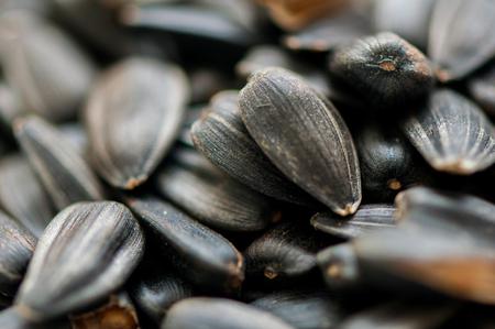 Sfondo di semi di girasole da vicino