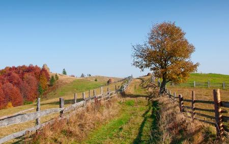 Schöne Herbstlandschaft in den Bergen, Karpaten, Ukraine