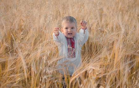 Young boy wearing traditional ukraine clothes in wheat.