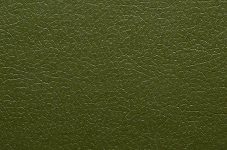 closeup texture of skin. background for design. green texture Stock Photo