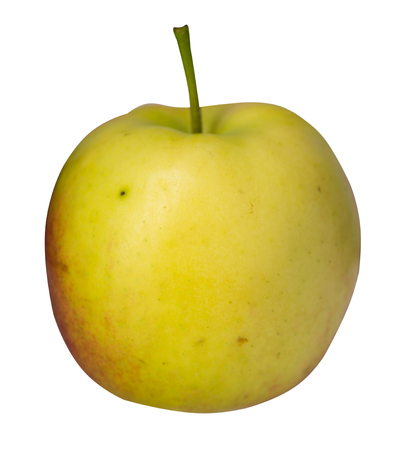 apple isolated on white background. red yellow apple . front view