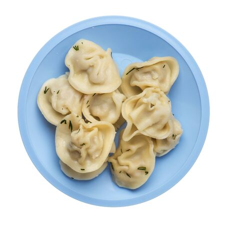 dumplings on a light blue plate isolated on white background