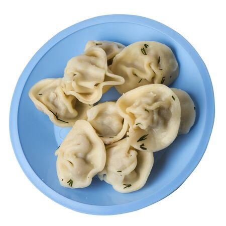 dumplings on a light blue plate isolated on white background .boiled dumplings.meat dumplings top side view .pelmeni with dill Foto de archivo - 129862272