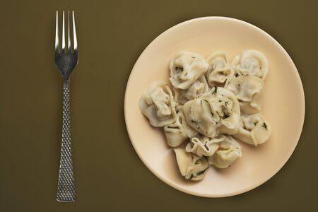 dumplings on a beige plate against a brown green  background. Meat dumplings top view. Asian cuisine