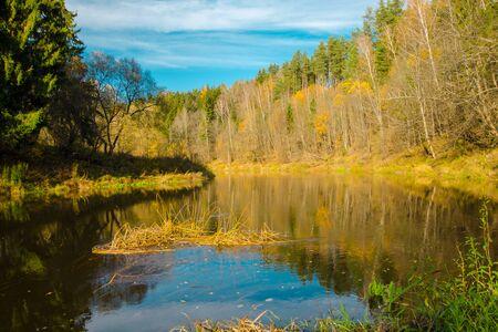 Herbstliche Wasserlandschaft mit leuchtend bunten gelben Blättern in der Region Vitebsk, Weißrussland. Herbstfluss im Wald