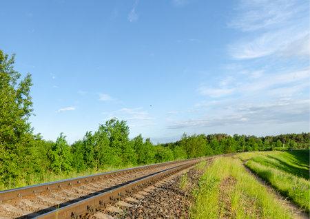 Railway in the summer evening forest. summer evening 免版税图像