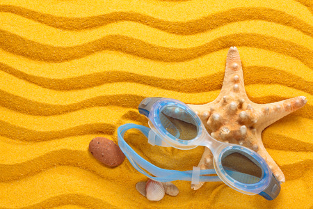 swimming goggles: Blue swimming goggles  and starfishes