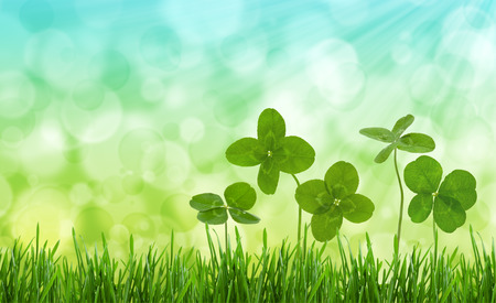 Four-leaf clovers in grass against blurred natural background. Stock Photo
