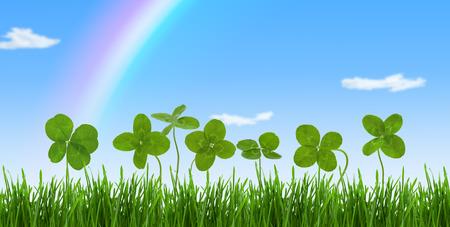 Lucky clovers in grass against rainbow and blue sky.