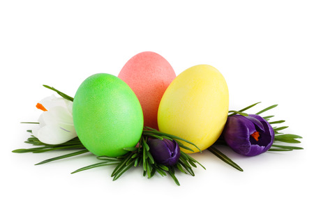 Colorful eggs grass and spring flowers. Isolated on white background. photo