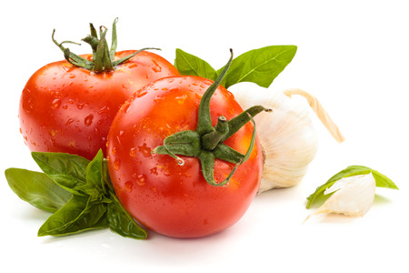 jitomates: Tomates mojados maduros aislados sobre fondo blanco. Foto de archivo