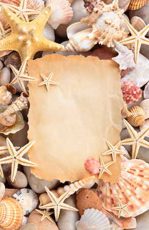 Background of ancient blank paper shells and starfishes.