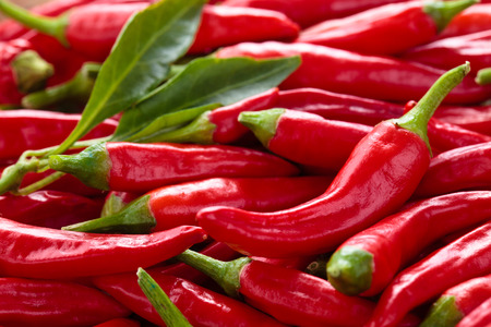 Background of ripe red chili peppers . Stock Photo