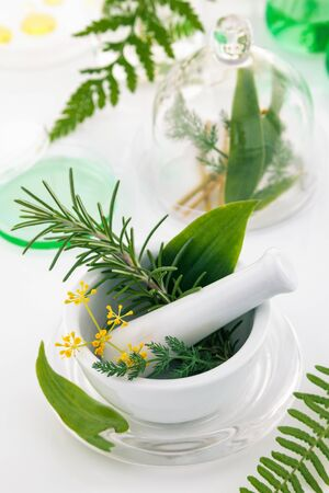Mortar and pestle with herbs on a laboratory table.