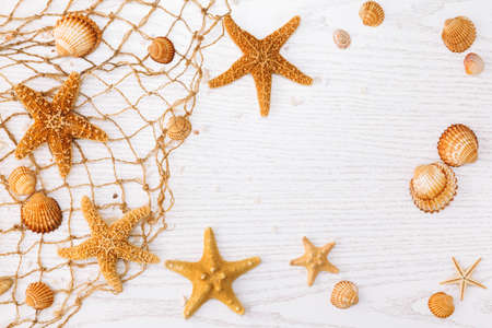 Summer time concept with sea shells and starfish on a white wooden background.