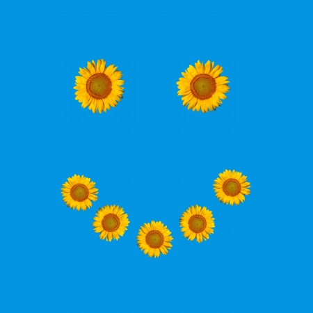 Smiley face symbol, composed of flowers sunflowers. Ready for your logo, text or symbol. Stock Photo - 15515088