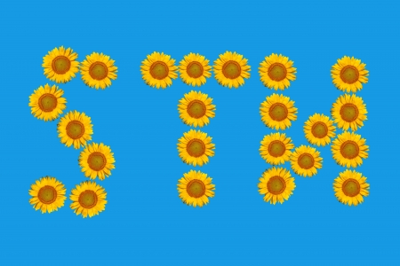 Floral alphabet made from flowers of sunflower. photo