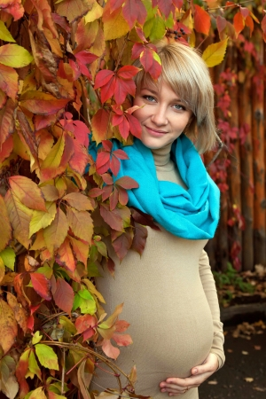 beautifu: Autumn portrait a lovely young gray-eyed blond pregnant woman. A beautiful face is framed by bright colorful autumn leaves Stock Photo