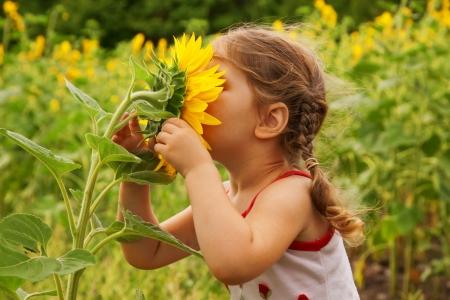 playing with baby: Bambino e girasole, estate, natura e divertimento. Archivio Fotografico