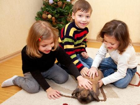 gemelos niÑo y niÑa: Niños hermosos acariciando un conejo. El cuidado de una mascota. Foto de archivo