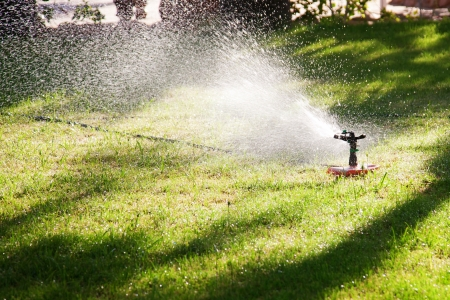 lawn sprinkler:  Lawn sprinkler watering the grass. Water drops in the sunlight.