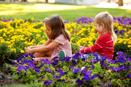 Little boy and girl picking flowers for mother  photo