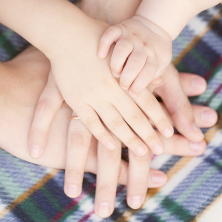 Four hands of the family, baby, child, mother and father together.  photo
