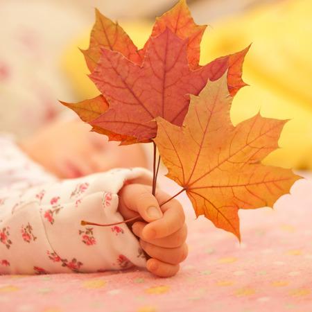 angeles bebe: Bebé recién nacido mano que sostiene las hojas de otoño de cerca.