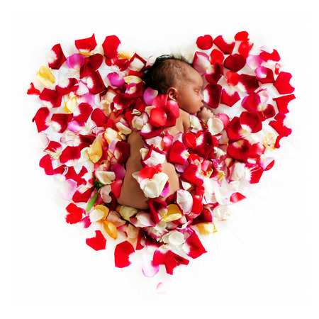 black newborn: Black newborn baby is sleeping in the petals of flowers. Isolated on white background.