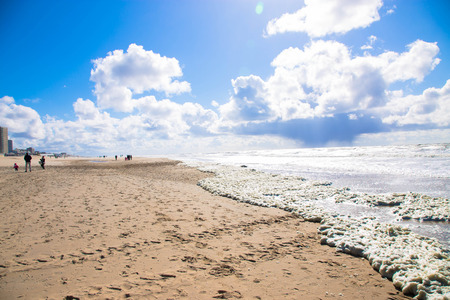 north holland: Deserted beach. The North Sea, the Netherlands, Noordwijk.