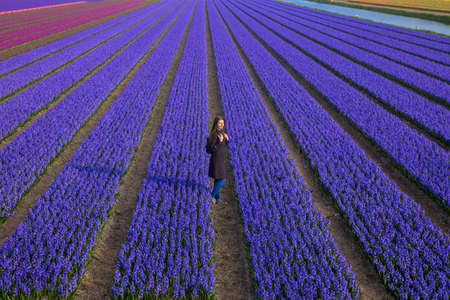 Beautiful young girl stands among flower fields. A teenage girl in a coat walks along the hyacinth violet blossoming fields. Youth and spring concept. Top view. Standard-Bild - 99953272