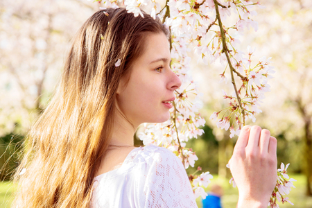 Spring portrait of a young teen girl in a cherry blossoming garden. A lovely girl and cherry flowers, a blooming spring. Standard-Bild - 99983895