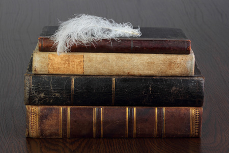 Old books and white feather  photo