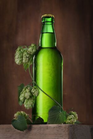 Beer bottle with hop stem on brown background