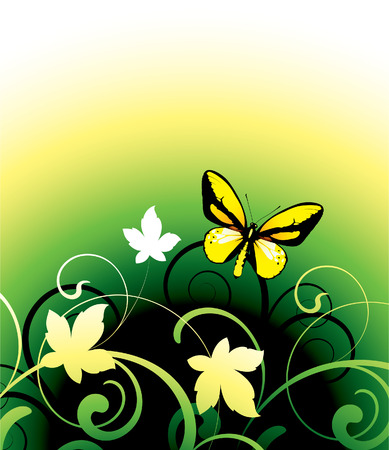 butterfly on a floral background