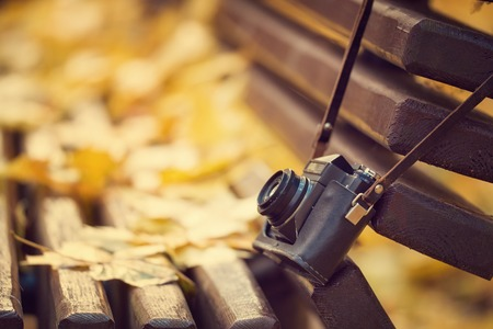 Vintage camera hanging on wooden bench in autumn park.  style toned photo.