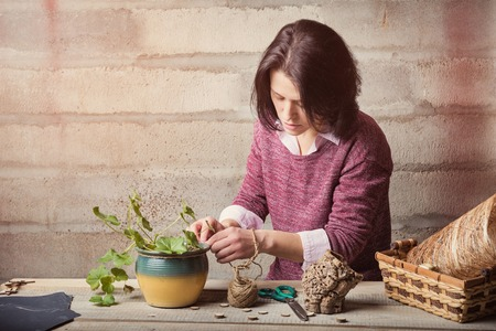 house plant: Woman is handcrafting a house plant Stock Photo