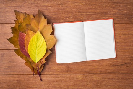 memoirs: Open note book and autumn leaves over wooden background