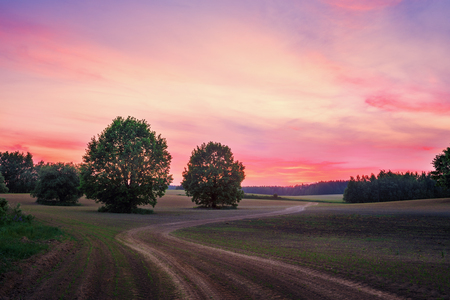 gloaming: Landscape with sunset and countryside road