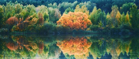 reflection: Autumn lanscape with trees reflection in water Stock Photo