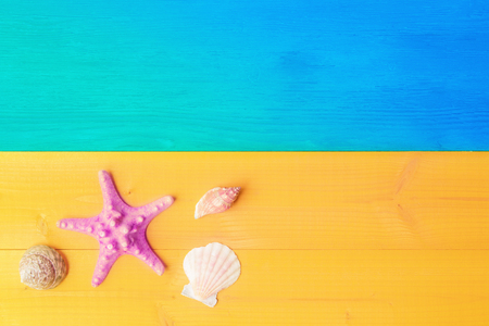 Holiday summer concept, seashell and starfish on yellow blue wooden background