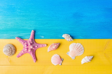 Vacation summer concept, seashell and starfish on yellow blue wooden background