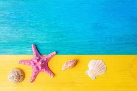 Holiday concept, seashell and starfish on yellow blue wooden background