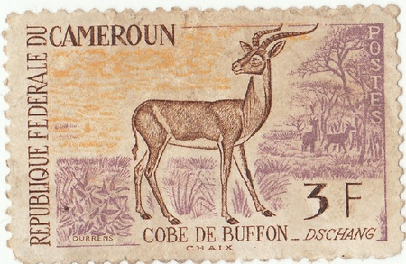 postage: Cameroon postage stamp Stock Photo