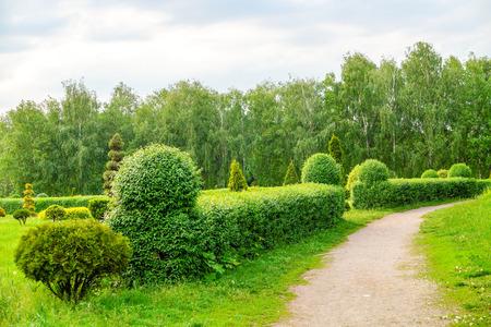 Paesaggio di arte topiaria. Bella decorazione d'arte da giardino su sfondo di alberi esotici in fiore nel parco.