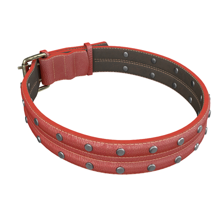 doggy leather collar on an isolated white background. 3d illustration Stock Illustration - 113571324