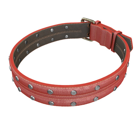 doggy leather collar on an isolated white background. 3d illustration Stock Illustration - 113571326