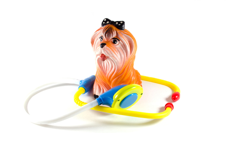 doctor toys: dog doctor
